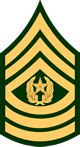 Command Sergeant Major